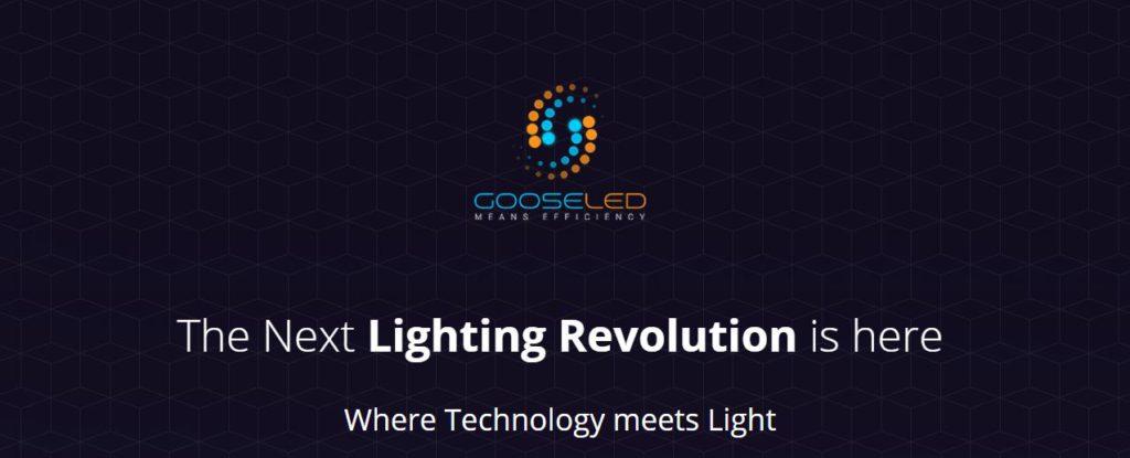 Goose led-Smart Lighting solution